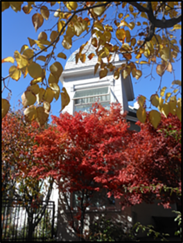 Recent shot of the tower with fall foliage (photographer, Deb Hinman)