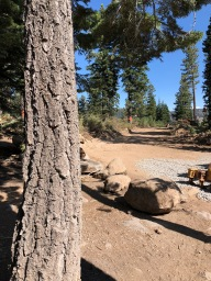 Tahoe trail